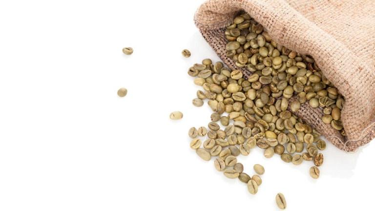 café verde saco